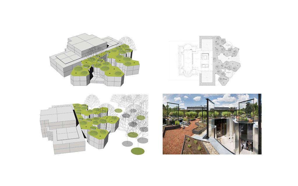 Entwurf Dachbegrünung Visualisierung | Foto Helmut Pierer